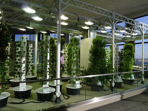 indoor grow facility